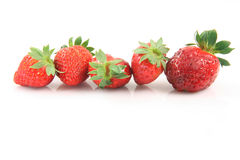 Five strawberries Royalty Free Stock Photos