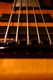 Five String Bass Bridge. Upright bridge shot of a 5 string bass in with selective focus on strings just above 1st soapbar pickup. - one of few honey finish 5 Stock Photo