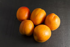 Five sun sweet apricots, one halved with stone. Prunus. Royalty Free Stock Image