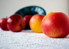 Five sweet apples Royalty Free Stock Images
