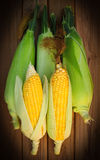 Five sweet corn on wood table Stock Photo