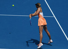 Five times Grand Slam champion Maria Sharapova of Russia in action during quarterfinal match at Australian Open 2016 Stock Images