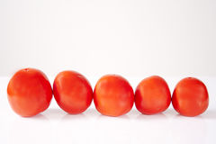 Five tomatoes Stock Photography