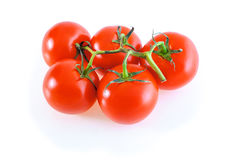 Five tomatoes on a branch isolated. Five tomatoes on a horizontal branch separately on a white background Stock Image
