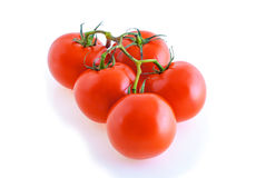 Five tomatoes on a branch isolated on a white background. Five tomato on a branch separately on a white background Stock Photos