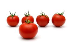 Five tomatoes with four in blur Royalty Free Stock Images