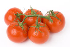 Five tomatos Royalty Free Stock Image