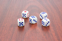 Five traditional six-sided dice on wooden surface. Five traditional plastic white six-sided dice with red and blue dots and rounded corners on wooden surface Royalty Free Stock Photos