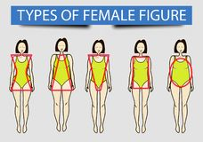 Five types of female figures,  image Stock Image