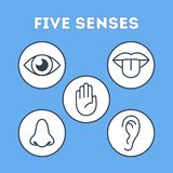 Five types of human sense concept illustration. Five types of human sense. Vision through eye, smell with nose, taste with tongue. Sensory perception through vector illustration
