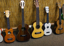 Five Ukuleles. Photos of 5 ukuleles lined up Stock Photos
