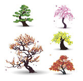 Five vector trees with birds. On the white background Vector Illustration