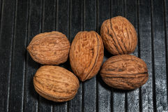 Five Walnuts Royalty Free Stock Photography