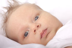 Five weeks old baby boy Royalty Free Stock Images