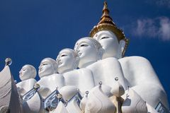 Five white buddha. Temple public thailand Stock Photography