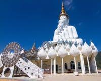 five white buddha Stock Image