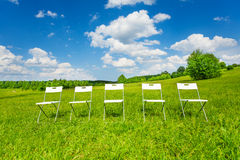 Five white chairs stand in a row on green grass Royalty Free Stock Image