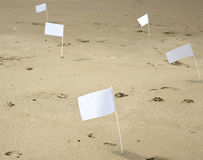 Five white flags at the beach Stock Images