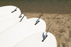 Five white windsurf boards Stock Image