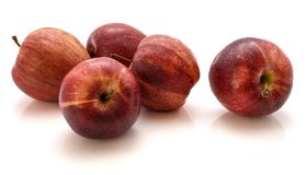 Gala apples  on white background. Five whole Gala apples  on white background Royalty Free Stock Images