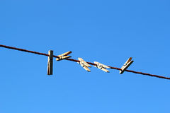 Pegs on a clothesline. Stock Photo