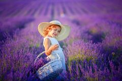 Five years girls stand in lavender field dressed in white dress and hat. Cute face and gold hair holding lavender stock photography