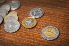 Five zloty coin Stock Photo