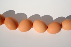 Fiveandahalfeggs. A line of brown eggs Stock Image