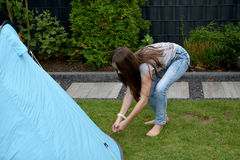 Fixing the tent. Girl fixing the tent on the ground, putting tent pegs in Stock Photography