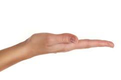 Fixation ou apparence femelle de main quelque chose Images stock