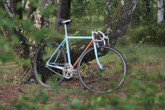 Fixed gear bicycle Royalty Free Stock Photography