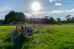 Fixie!. A fixie bike and a beautiful day in a peaceful place Stock Image