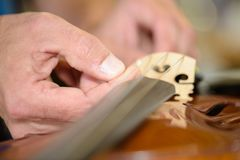 Fixing a string instrument. Music royalty free stock photo