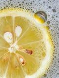 fiz柠檬 免版税库存图片