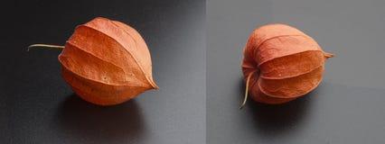 Fizalis extraños de la fruta Fotos de archivo