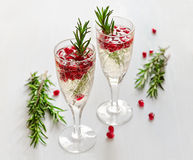 Fizz with pomegranate seeds royalty free stock photos