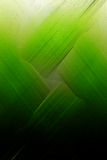 Fizz verde Fotografia de Stock Royalty Free