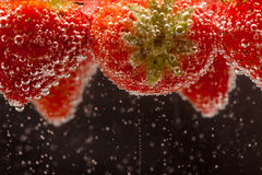 Fizzing Strawberries. Fresh strawberries fizzing in sparkling water Stock Image