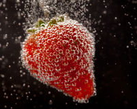 Fizzing Strawberry. A fresh strawberry fizzing in sparkling water Royalty Free Stock Images