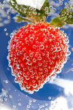 Fizzy Strawberry. In water with bubbles on blue background Royalty Free Stock Photography