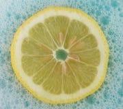 Fizzy Zitrone lizenzfreie stockfotos