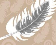 fjäder Royaltyfri Bild