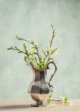 fjäder för blomma för dof för azaleablomningclose grund upp Royaltyfria Bilder