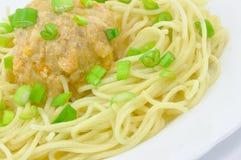 fjäder för meatballlökspagetti Arkivbild