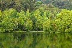 Fjäder lake Royaltyfria Bilder