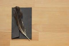 Fjäder och kuvert Arkivfoton