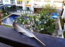 Fjäder på balkongen Arkivfoton