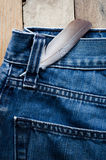 Fjäder på jeans Arkivbild