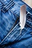 Fjäder på jeans Royaltyfri Foto