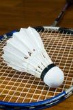 Fjäderboll med badmintonracket Royaltyfri Fotografi